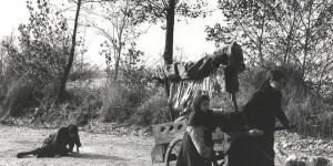 Paola Drigo traza un retrato del mundo rural de principios del siglo pasado que cautiva por su fuerza descriptiva.