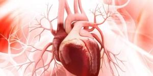 Muchos confunden la insuficiencia cardíaca con limitaciones de la vejez
