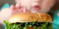 Los hábitos alimentarios que se adquieren a temprana edad actuarán como condicionantes de la salud en la adultez.