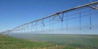 Cuando el agua de riego es de mala calidad, por un contenido elevado de bicarbonato de sodio o de sales, los cultivos rendirán menos de lo esperado.