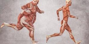 6 claves contra la obesidad