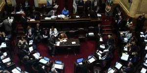Sesión especial en el Senado. foto: Archivo