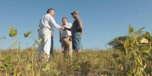 El ministro de Agroindustria, Luis Miguel Etchevehere, recorrió campos afectados por la sequía. El Banco Nación asistirá a los productores con nuevas