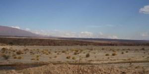 La Argentina debe cambiar su forma de pensar: hay que industrializar nuestras materias primas en su lugar de origen.