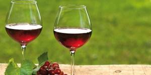 La Argentina ocupa el puesto octavo en el ranking mundial de consumo de vino, con 900 millones de litros por año.
